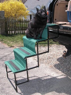 Pet Steps Image